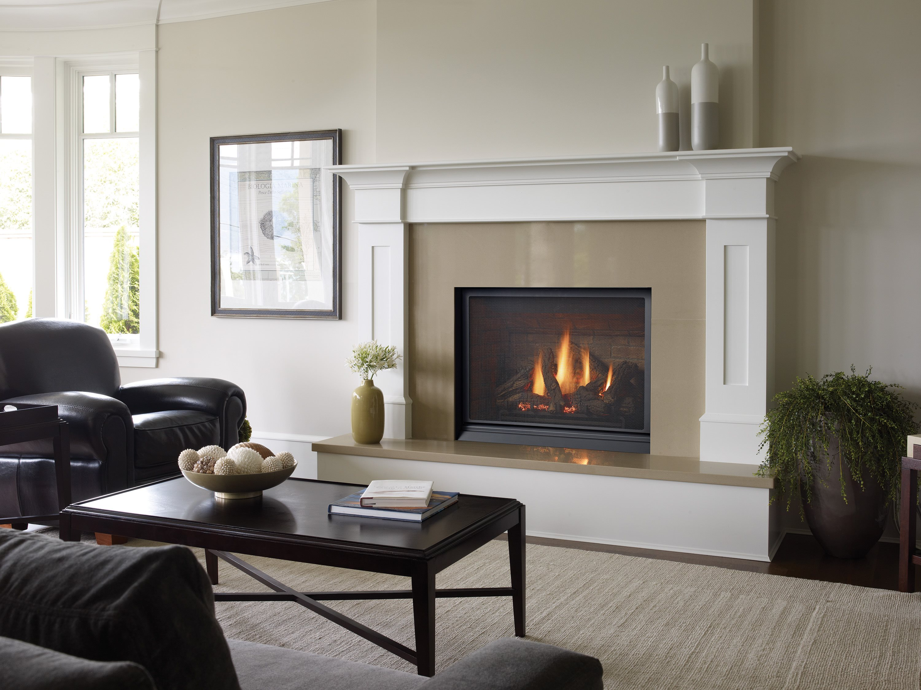 B36XTCE-1-HIGH.jpg_FIREPLACE