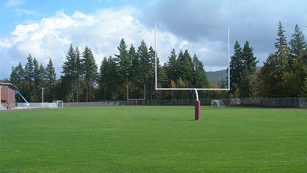sportsfield.jpg